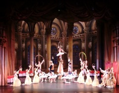 RETRANSMISSION BALLET 2016 : LA BELLE AU BOIS DORM