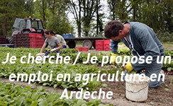 Covid19 : Chercher ou proposer un emploi en agricu