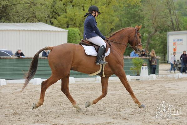 Privas Equitation Mars 2020