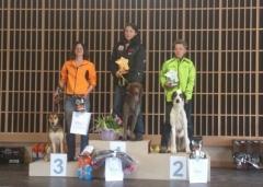 Championnats Fédéraux de la FSLC 2013