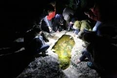 L'enquête Salamandre se poursuit en Ardèche