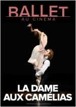 Ballet Dame Camélias
