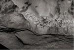 Dallaporta 2017 Grotte Chauvet