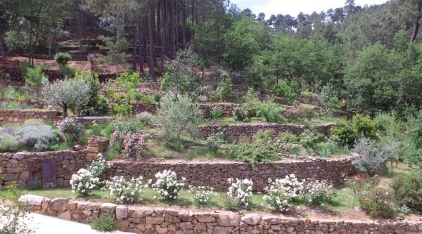 Jardin Mercurart Galerie